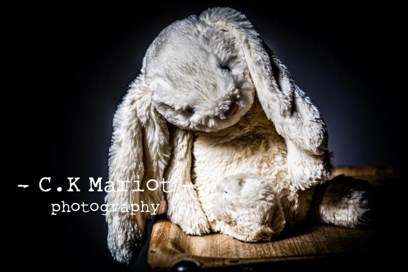 CK-Mariot-Photography-0207