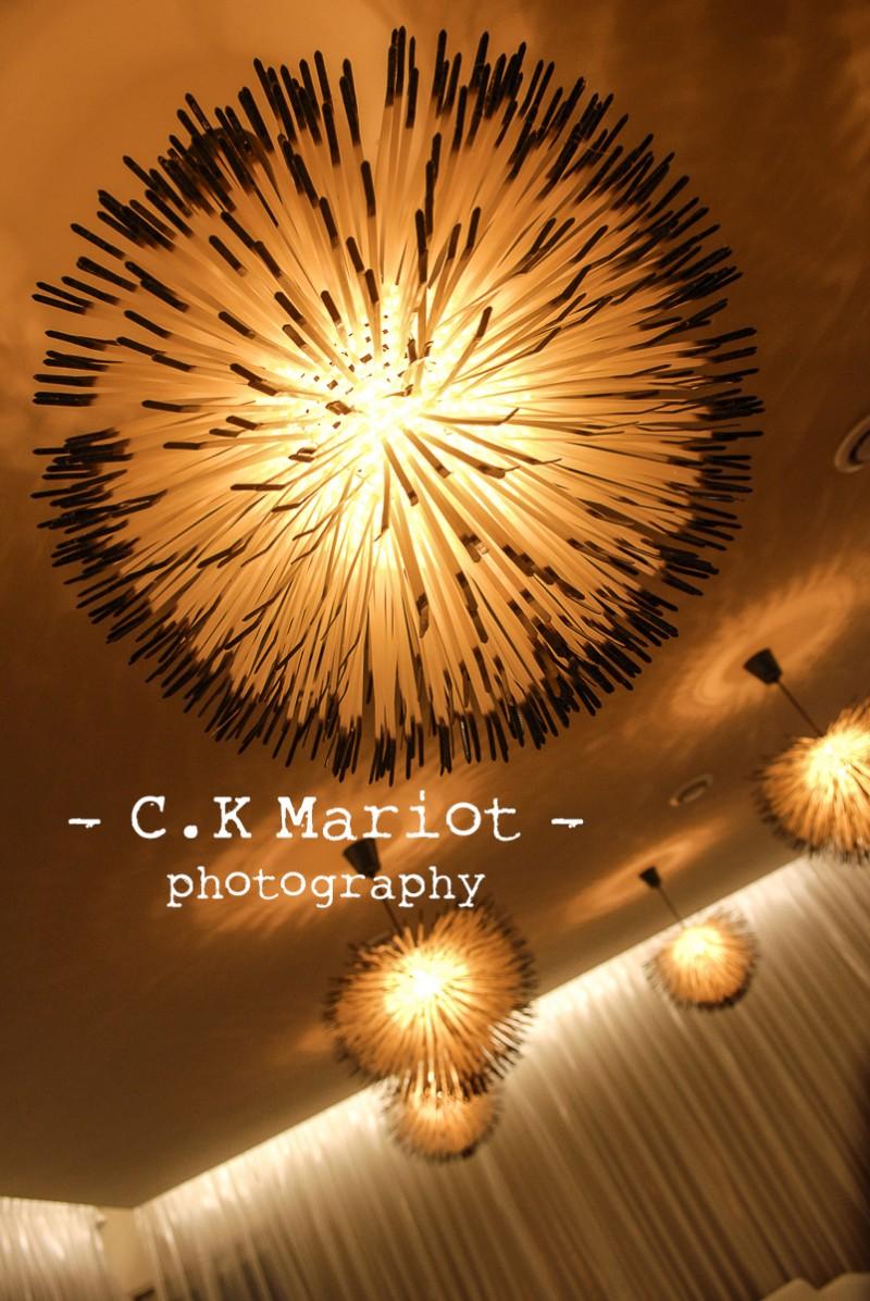 CK-Mariot-Photography-orange-0937
