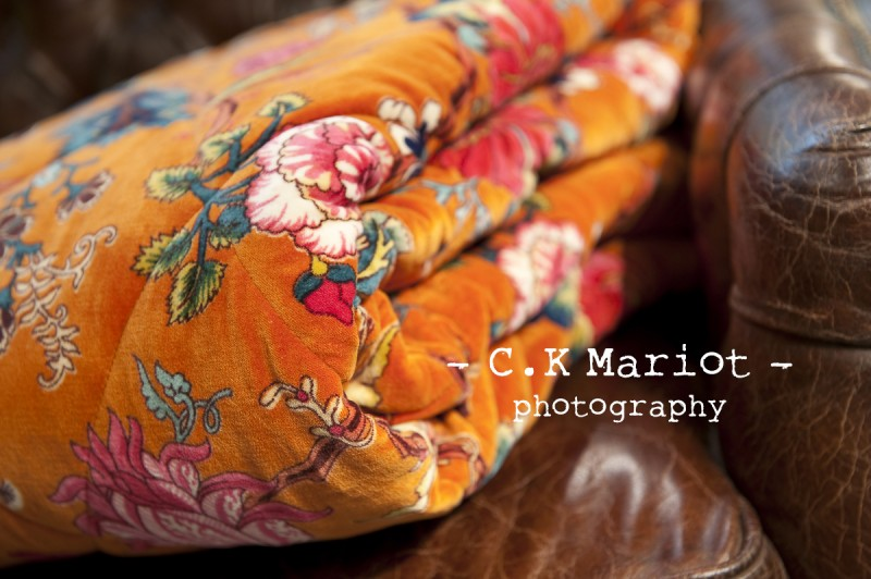 CK-Mariot-Photography-orange-2847